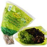 Lechuga Crespa Verde Hidropónica Defrescura 170 g en Éxito