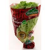 Lechuga Crespa Verde Hidropónica del Éxito 170 g en Éxito