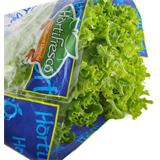 Lechuga Crespa Verde del Éxito 200 g en Éxito